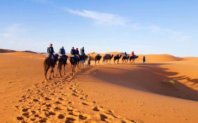 【摩洛哥必游景点】骑骆驼、滑沙游玩撒哈拉沙漠| Sahara